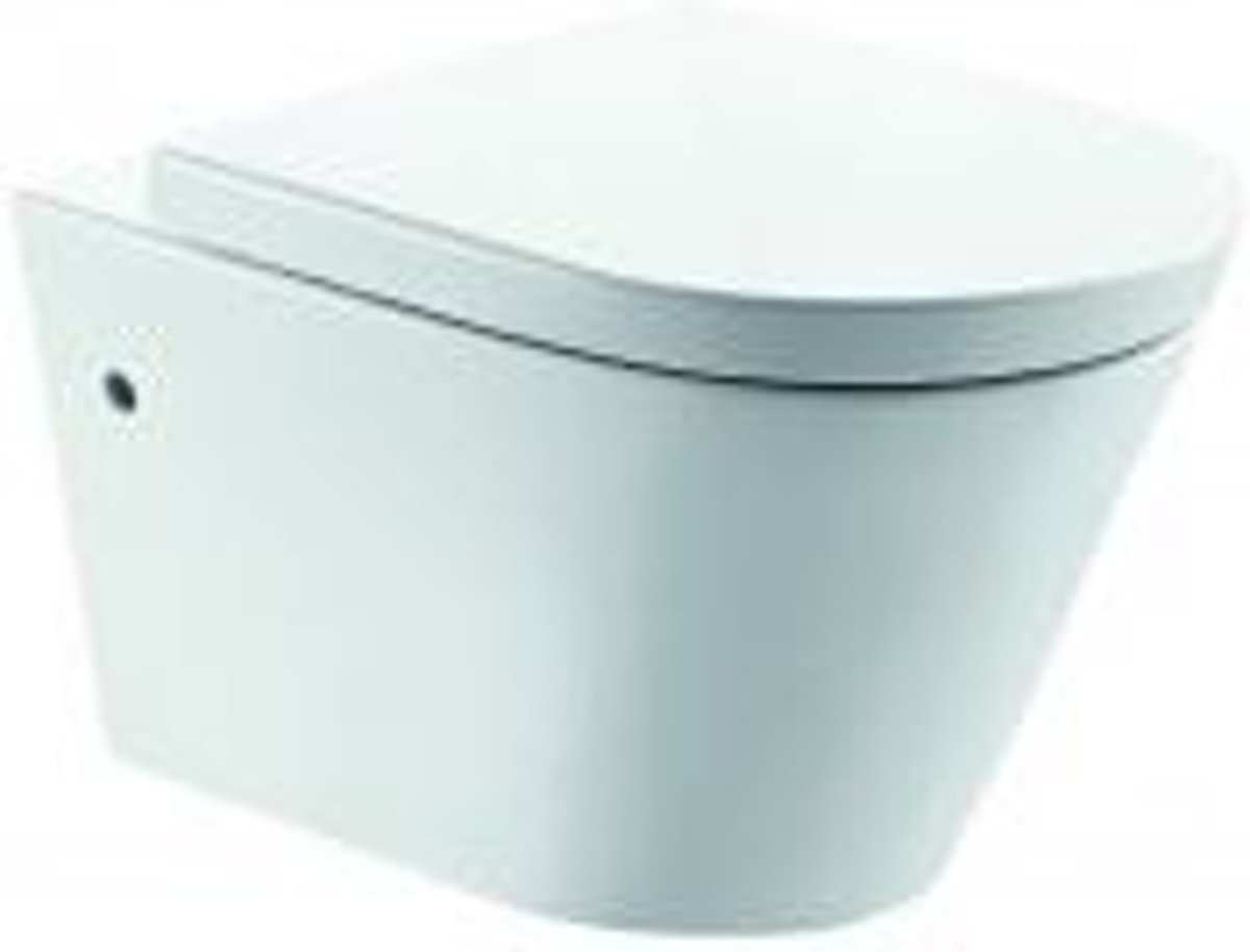 Vlakspoel Toilet Hangend : Goedkoopste wiesbaden flow hangend toilet diepspoel rimless nano
